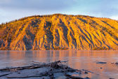Clay cliff at Yukon River near Dawson City — Stock Photo