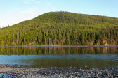 Taiga hills at Steward River near town of Mayo — Stock Photo