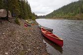 Namioty i kajaki na mcquesten rzeki jukon w kanadzie — Zdjęcie stockowe