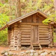 Stock Photo: Old solid log cabin shelter hidden in the forest