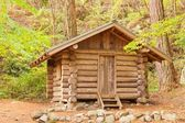 Old solid log cabin shelter hidden in the forest — 图库照片