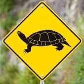 Attention Turtles Crossing animal road sign — Stock Photo