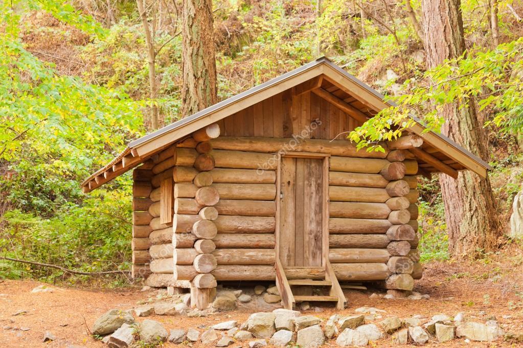 vieil abri de cabane en bois massif cach dans la for t photographie pilens 18155447. Black Bedroom Furniture Sets. Home Design Ideas