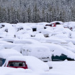 Snow buried cars after blizzard on car park — Foto Stock