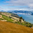 Dunedin and Otago Harbour South Island New Zealand - Stock Photo