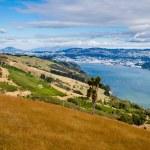 Dunedin and Otago Harbour South Island New Zealand — Stock Photo #23206080