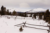 Scenic Yukon Canada winter mountains ranch fence — Stock Photo