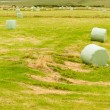 Harvesting cut grass for hay plastic wrapped bales - Stock Photo