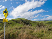 Attention Kiwi Crossing Roadsign and NZ landscape — Stock Photo