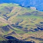 Farmland landscape scene Hawke's Bay New Zealand — Stock Photo #26517913