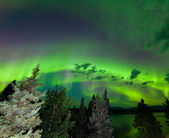 Intense green Aurora borealis over boreal forest — ストック写真