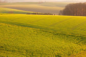 Gently rolling hills farmland of Germany Europe — Stock Photo