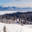 Stock Photo: Taigsnowshoe trail landscape Yukon T Canada