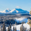 Stock Photo: Taigwinter snow landscape Yukon Territory Canada