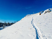 Open hillside deep snow uphill snowshoe trail — Stockfoto