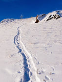 Deep snow uphill snowshoe trail on open hillside — Stok fotoğraf