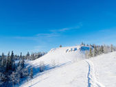 Snowy winter hills snowshoe track wonderland scene — Stock Photo