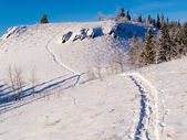 Snowy winter wonderland hills snowshoe track scene — Stock Photo