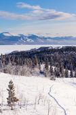 Taiga snowshoe trail landscape Yukon T Canada — Stock Photo