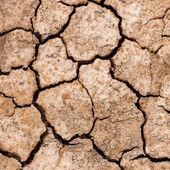Cracked dry mud drought concept nature background — Stock Photo
