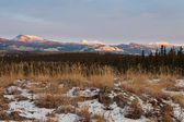 Winter wilderness landscape Yukon Territory Canada — Stock Photo