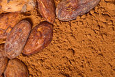 Cacao baclground — Stock Photo