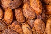 Cacao baclground — Stock Photo