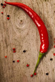 One chili pepper on old wood — Stock Photo