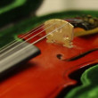 Violin in green case — Vídeo de stock