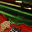 Violin in green case — Stock Video