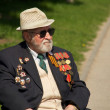 Veterans of World War II — Stock Photo