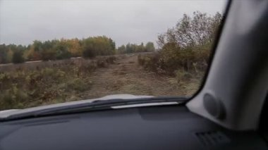 Driving rally car — Stock Video