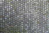 Cobbled Stones Texture — Foto Stock