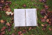 Single tomb stone — Stock Photo
