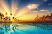 Sun rays inside coconut palms — Stock Photo