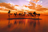 Sunset over tropic atoll — Stock Photo
