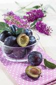 Bowl full of damson plums (Prunus insititia) — Stock Photo