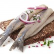 Typical Dutch herring — Stock Photo