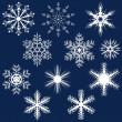 Stock vektor: Snowflake Set