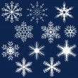 Snowflake Set — Stock vektor