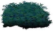 Arbusto — Vector de stock