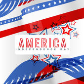 Stylish american independence day — Stock Vector