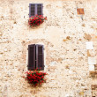 图库照片: Windows in Tuscany