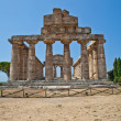 Paestum temple - Italy — Stock Photo #12700131