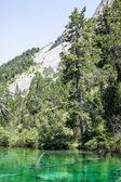 Jezioro zielony — Zdjęcie stockowe