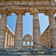 Paestum temple - Italy — Stock Photo #13175688
