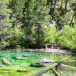 Stock Photo: Green Lake
