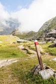 意大利阿尔卑斯山的路径登录 — 图库照片