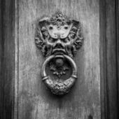 Devil Head Door Knocker — Stock Photo