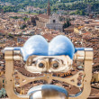 Foto Stock: Florence panoramic view